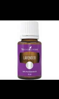 [FREE MAIL] BN YL Lavender Essential Oils 5ml or 15ml