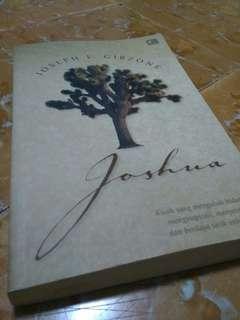 🔥Novel Joshua