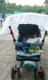 Giant carrier stroller