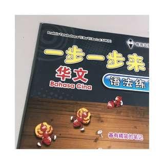 chinese assessment book; 一步一步【华文语法练习本】