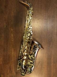 Trevor James Signature Custom Alto Saxophone (Phosphor Bronze)
