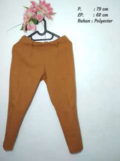 Light Brown pants