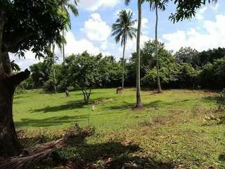 Alfonso Farm Lot Only for sale