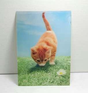 Vintage 3d Lenticular Postcard - Kitten