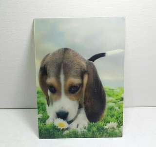 Vintage 3d Lenticular Postcard - Dog