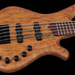 Mayones 5 string Bass with soft case