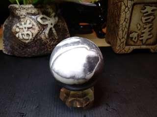🚚 #47 佛家七寶之一(硨渠)貝殼化石球60mm,334克