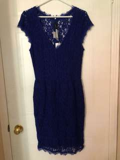 Aritzia Babaton Blur Lace Dress