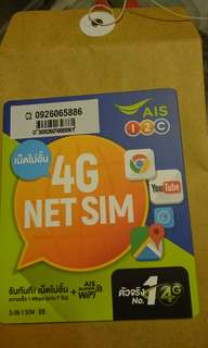 Travel Net Sim Card 4G