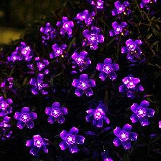Purple Flower Fairy Lights
