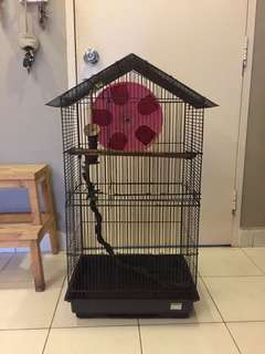 Tall cage for sugar glider and bird ( including big running wheel for s.glider )