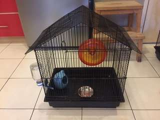cage for sugar glider and bird.