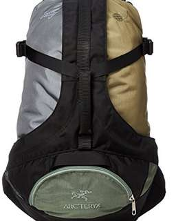 Arc'teryx retro x beams 25L 1998