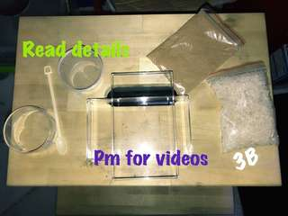 🍀Miracle baby brine shrimp ( bbs sea monkeys ) for fish fry Betta food hatchery all in one. no need air pump read detail!