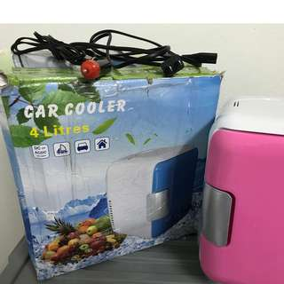4Litre Mini Portable Cooler and Warmer Fridge Car/Home Use Mini Refrigerator