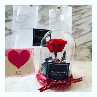 ⚠️現貨一個🎉深紅永生花玫瑰花玻璃罩🌹