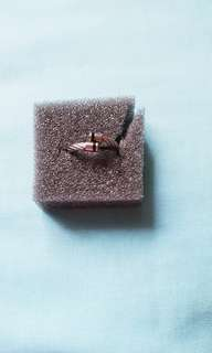 Silverworks ring unisex used only once