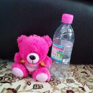 Princess pink bear with yellow bagpack