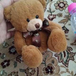 Teddy brown petite cute