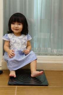 Alice blue dress with bordir