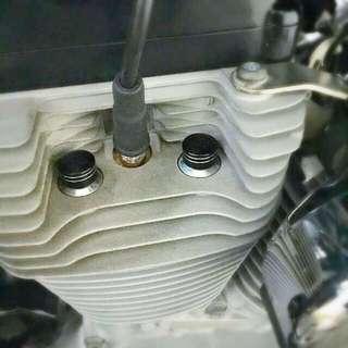 BN Harley Davidson Headbolt Cover