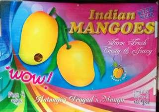 🇮🇳印度芒果🇮🇳Indian mangoes