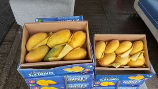 Pakistani mangoes home delivery free