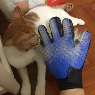 (Free Postage) Grooming Glove for Cats or Dogs