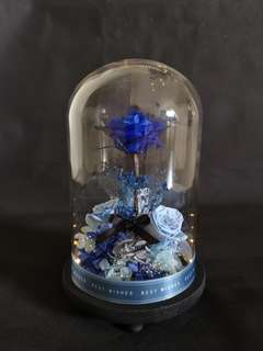Preserved flowers in a Jar with LED light (Blue Rose)