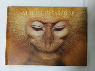 Wildlife In Paradise
