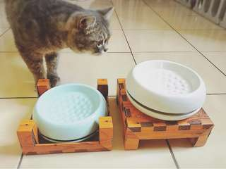🚚 陶瓷防蟻貓碗