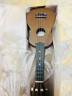 Ukulele brown