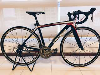 Polygon Carbon Road Bike