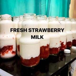 FRESH FRUITY MILK
