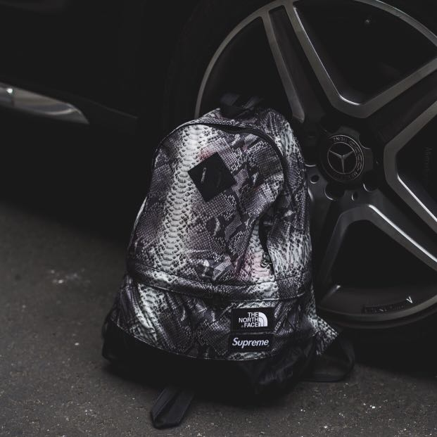 928359d31ea Supreme SS18 The North Face Snakeskin Lightweight Day Pack/Backpack, Men's  Fashion, Bags & Wallets, Backpacks on Carousell
