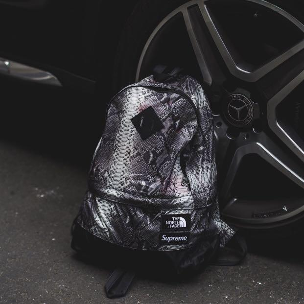 21d1d7cb3 Supreme SS18 The North Face Snakeskin Lightweight Day Pack/Backpack ...