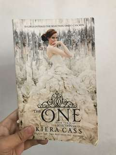 Novel The One