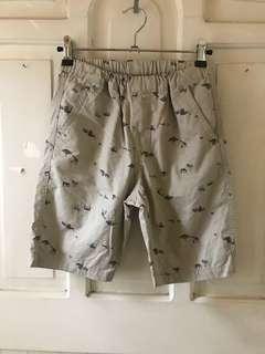 Uniqlo kids boy's shorts