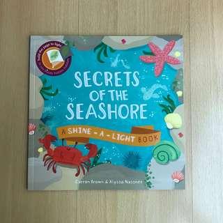 Shine-a-Light Book - SECRETS OF THE SEASHORE