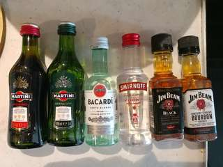 Smirnoff Vokda , Bacardi Rum , Jim Beam Black and Bourbon Whiskey , Rosso or Extra Dry  Martini 酒辦