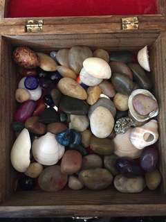 Lot of semi precious gems,stones and shells