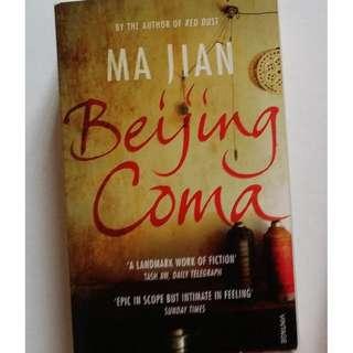 Beijing Coma Fiction