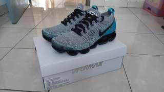 Nike Vapormax 2.0 Dusty Cactus