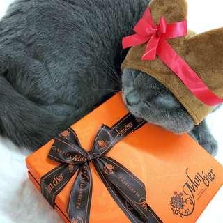 🚚 貓咪頭套 愛心巧克力