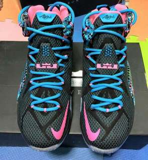 Lebron XII chromosome