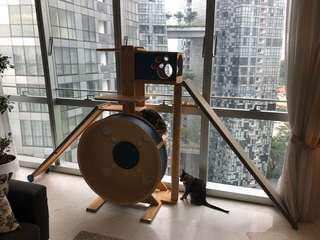 Cat Tower with Wheel