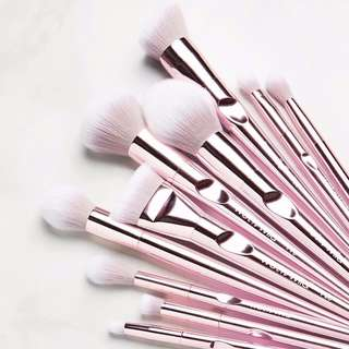 ✨INSTOCK SALE: WET N WILD New Pro Brush Line