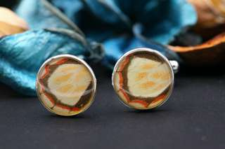 Navia Jewelry Real Butterfly Wing Delias anjae Alloy Cufflinks Korea