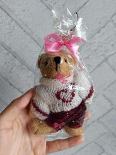 Bear in pullover