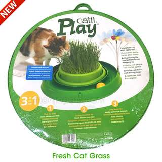 Circuit Ball Toy with Grass Planter 3 – in-1